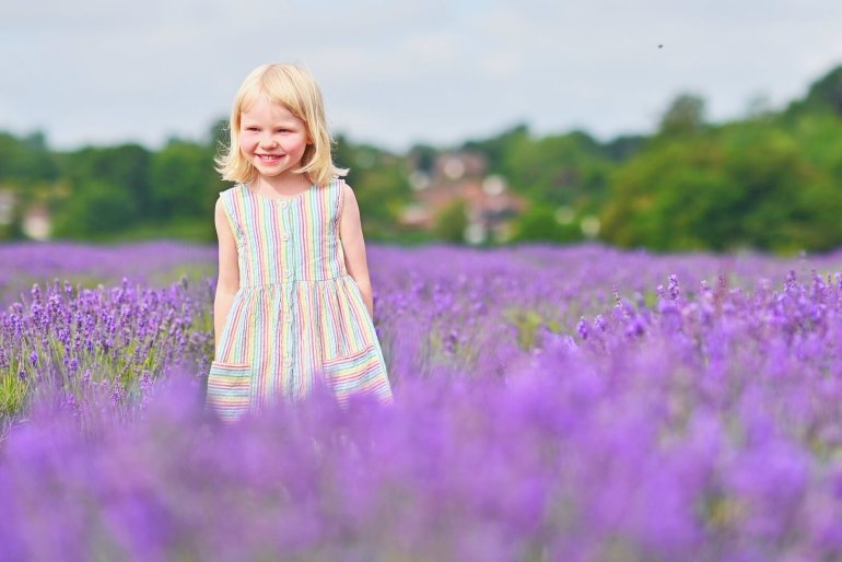 Smiling girl in lavender at Mayfield Lavender Farm
