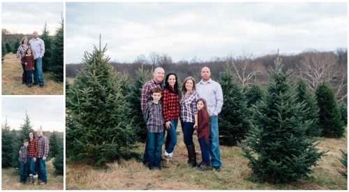 christmas-tree-farm-mini-sessions-annapolis-family-photographer_1408