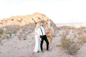Dallas-Fort-Worth-Wedding-Photographer- destination - wedding - photographer - traveling - wedding - photographer - big - bend - national - park - big - bend - national - park - wedding - big - bend - engagement - session - destination - engagement - session