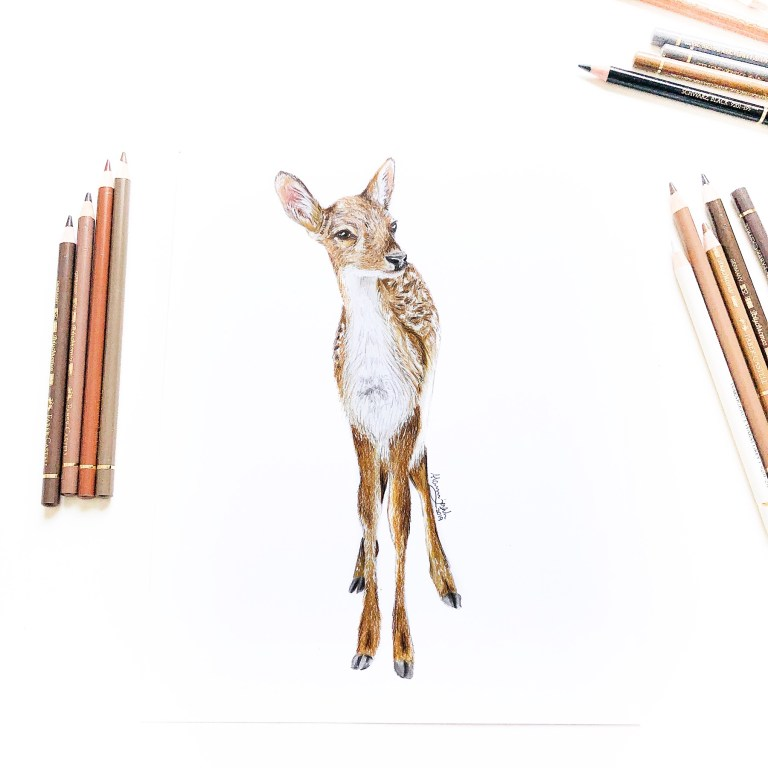 Instagram Challenge #märzaufpapier - Rehkitz Zeichnung