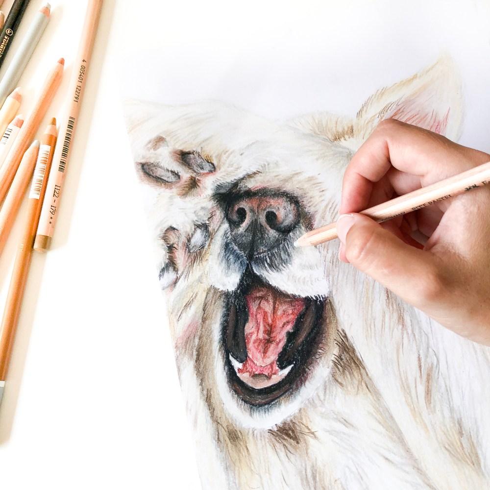 Animal Portrait Golden Retriever Nell Process