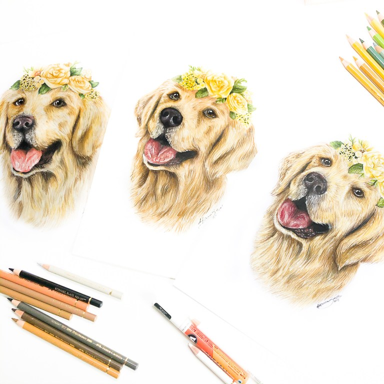 Golden Retriever Pastel Mixed Media Buntstift