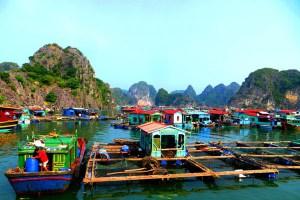 A fishing village on Halong bay
