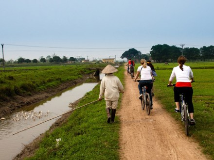 Hanoi Biking Plus Food Tour