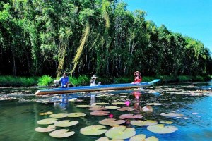 Mekong Delta Tourist Attractions 6