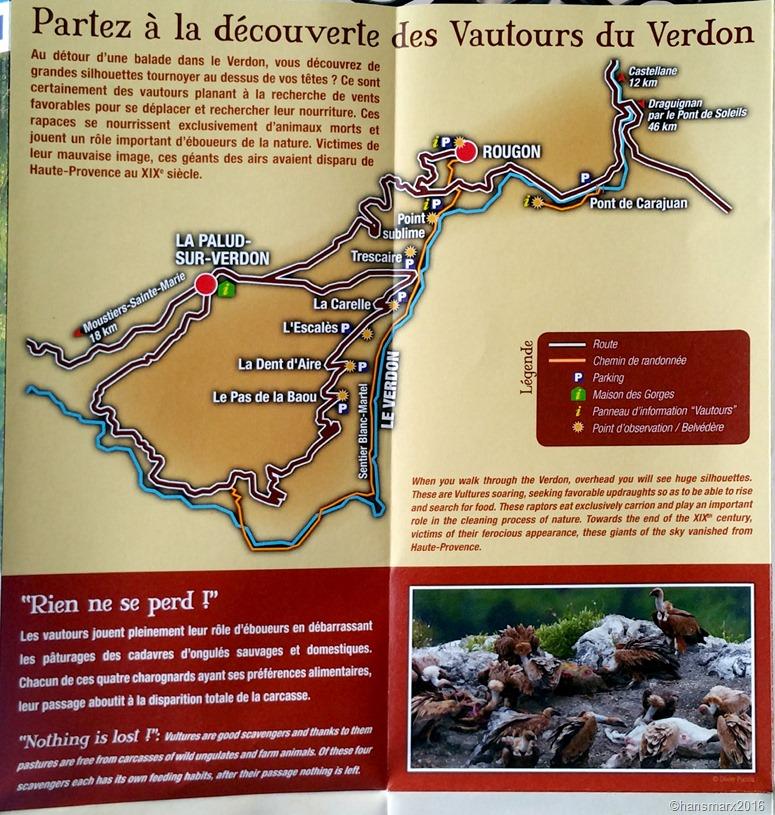 Vautours Raubvögel Vultures Esparron_2