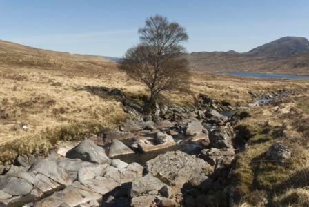 Corrour Scotland 2007-9