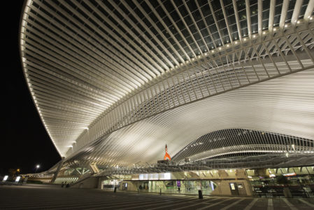 Station Luik-Guillemins 2013-1