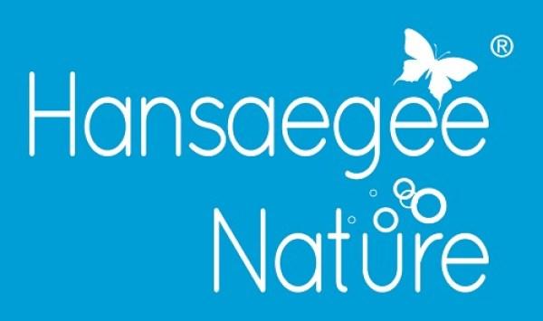 logo hansaegee