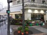flower shops on every corner