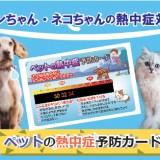 ペットの熱中症予防カードのデザイン