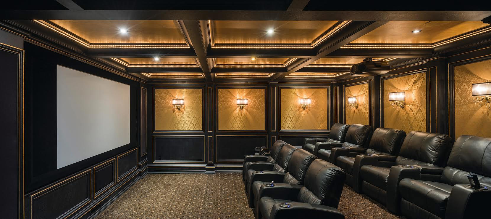Home Theater / Media Rooms