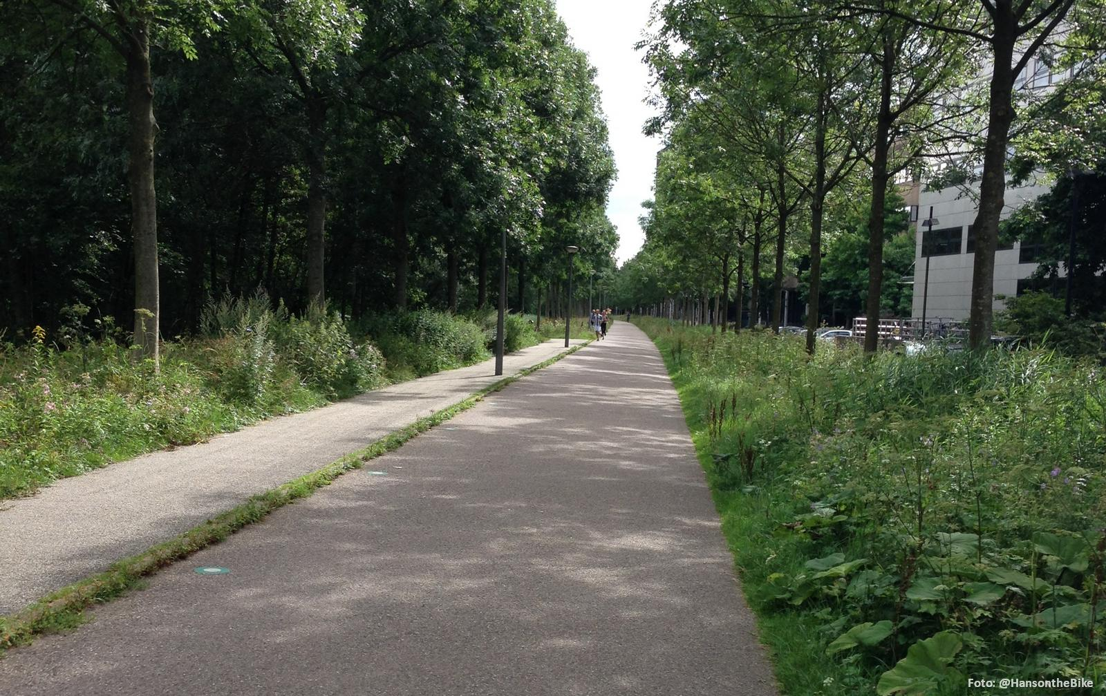 amsterdam-hansonthebike-02
