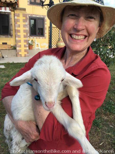 Our AirBnB host had a menagerie of animals: her latest rescues were two baby lambs. Karen used to love lamb meat, but has changed her mind now.