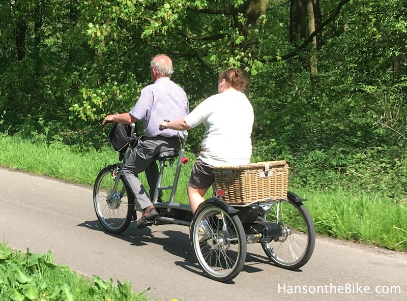 A pedal assist tandem tricycle is very uncommon, but does exists in the Netherlands, often to bring people out otherwise can not cycle