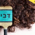 DIY מברשת שיער מעוצבת