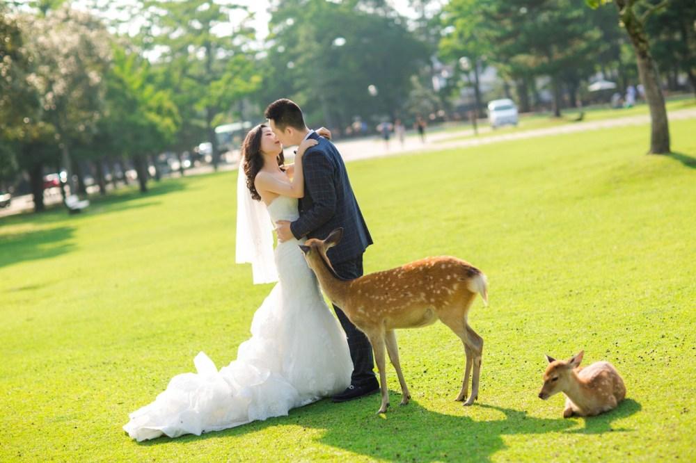 奈良 Nara    海外の結婚式の前攝 寫真集