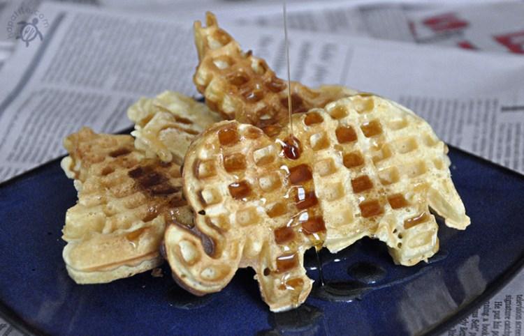 src_waffles
