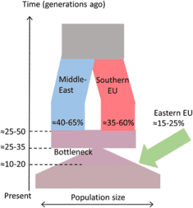 The time and place of European admixture in Ashkenazi Jewish history