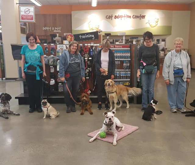 Dog Training Classes Offered