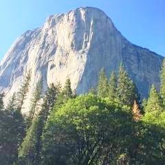 Cathedral Rock - Yosemite