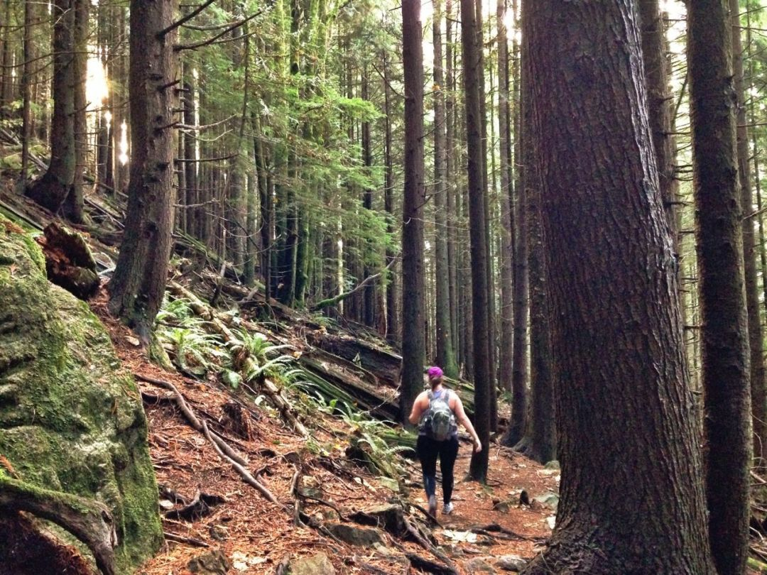 Hiking Solo on the Baden Powell Trail