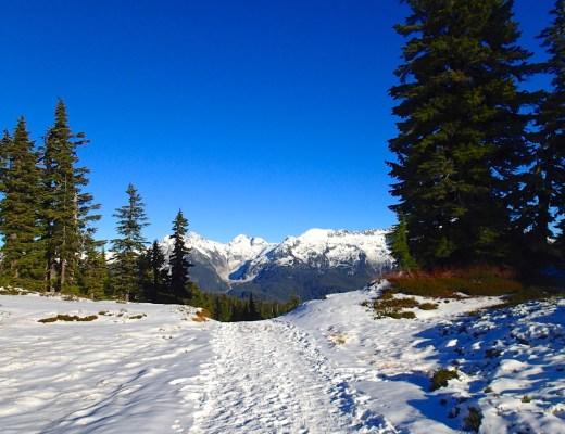 Snowy Elfin Lakes trail