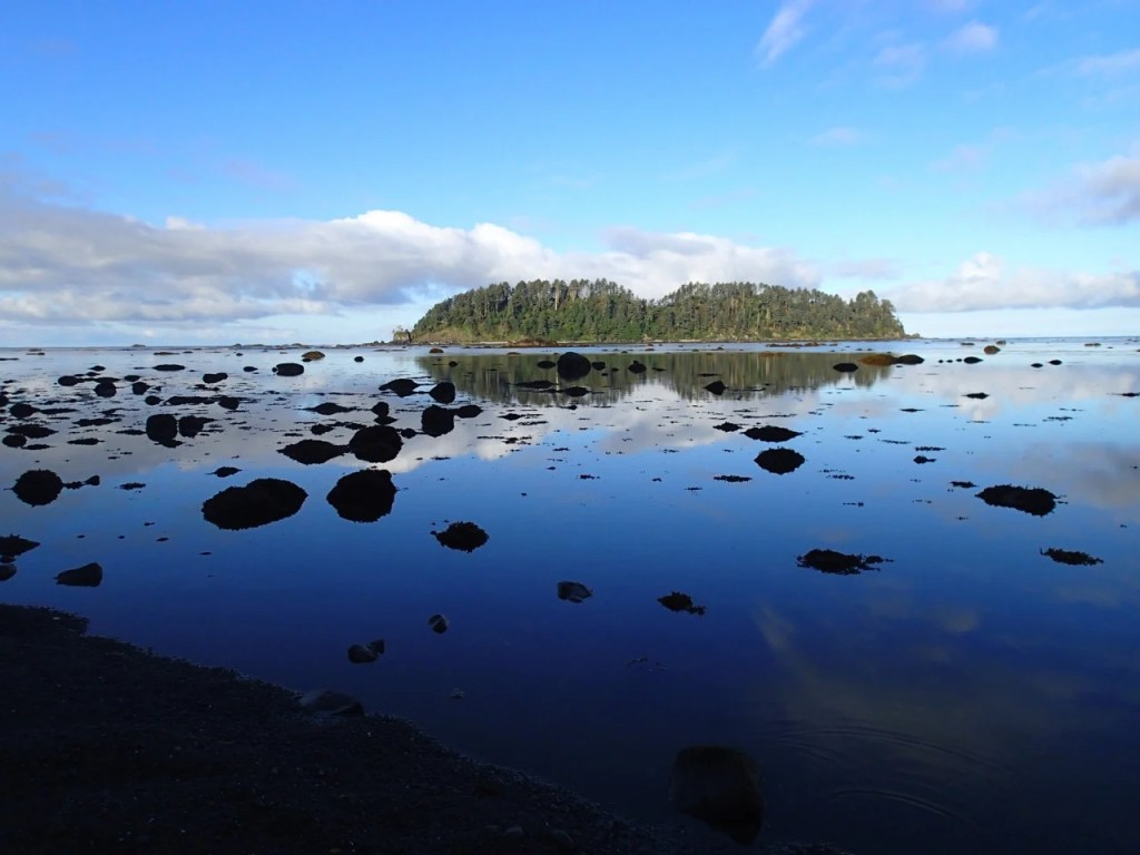 Ozette Loop trail