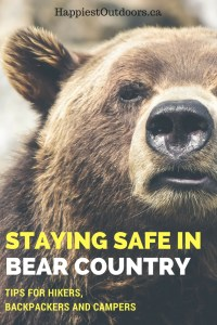 How to stay safe in bear country while hiking, backpacking or camping. Bear safety hips for hikers, backpackers and campers. Includes tips on how to avoid conflict with bears and what to do if you do see one.