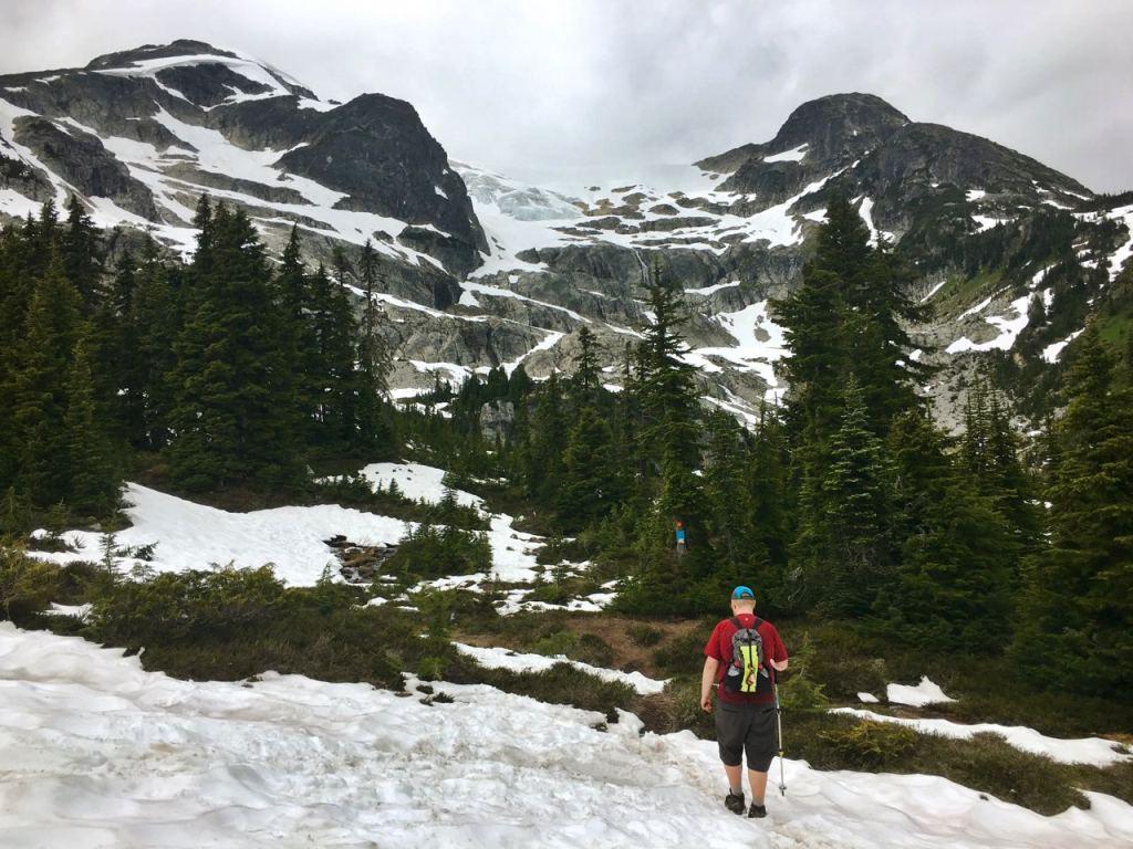 Skywalk Trail in Whistler