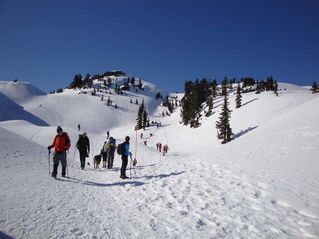 Snowshoeing at Mount Seymour near Vancouver, BC. The Ultimate Guide to Snowshoeing in Vancouver.