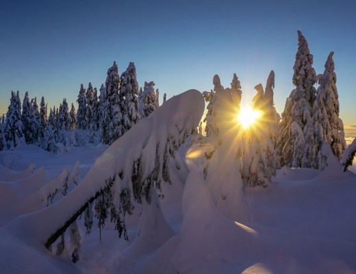 The sun sets behind snow covered trees on Grouse Mountain near Vancouver. It's a popular place for snowshoeing in Vancouver
