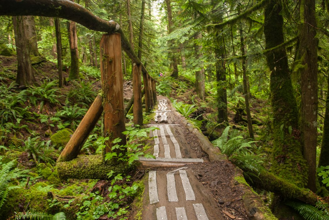 100+ Snow-Free Hikes in Vancouver: Trails You Can Hike Year Round