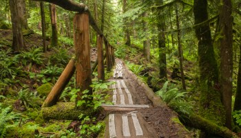 Most Instagrammed Hikes in Vancouver (Updated for 2019