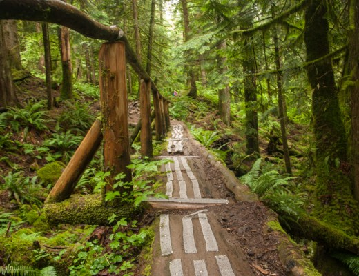 Log bridge on the Norvan Falls trail near Vancouver, BC. One of over 100 snow-free hikes near Vancouver