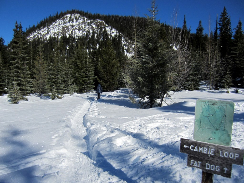 Trailhead for the Fat Dog Snowshoe Trail in Manning Park. Read about how to snowshoe here in the Ultimate Guide to Snowshoeing in Manning Park near Vancouver, BC, Canada