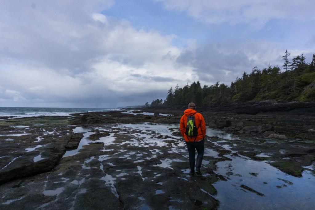 There are endless tide pools at Botanical Beach. Explore them as part of a road trip on the Pacific Marine Circle Route on Vancouver Island.