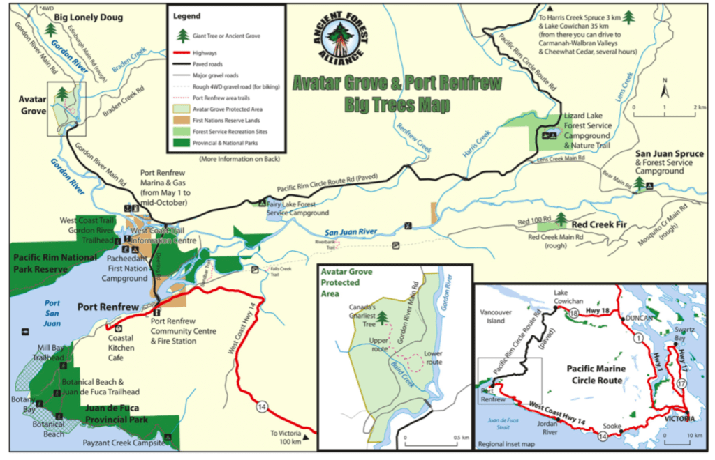 A map showing Avatar Grove, Big Lonely Doug and more from the Ancient Forest Alliance. Visit Big Lonely Doug, Avatar Grove and the other big trees near Port Renfrew, British Columbia.