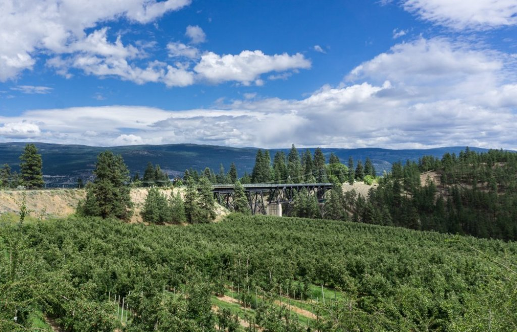 Trout Creek Trestle in Summerland, BC. Explore Summerland's wineries by bike with this self-guided tour.