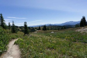The Heather Trail in Manning Provincial Park - one of the best hikes in Vancouver