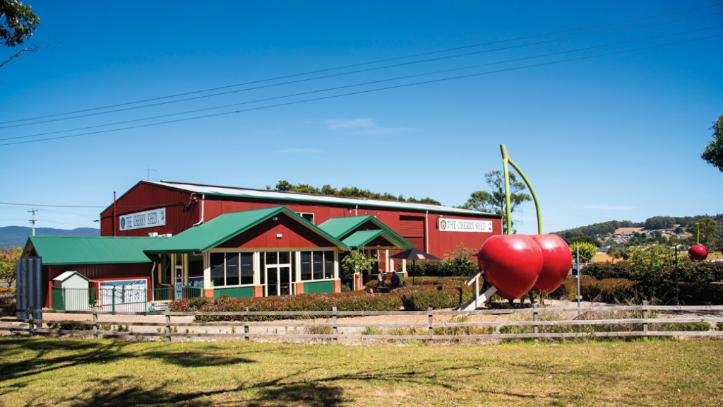 The Cherry Shed near Devonport, Tasmania. Just one of over 40 things to do in Devonport and Tasmania's North West.
