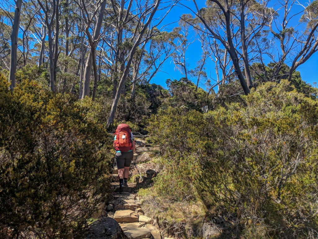 6-Day Overland Track Itinerary (Plus More Itinerary Options
