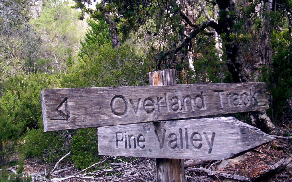 Along a few days for the side trip to Pine Valley from the Overland Track.