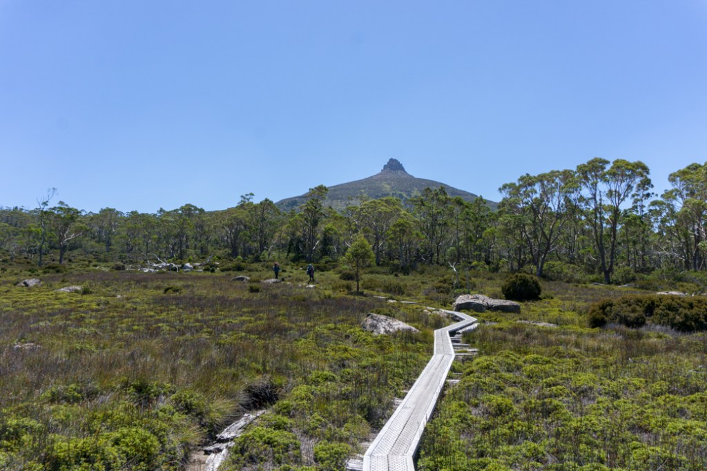 Mount Pelion East is next to Mount Ossa, but is a much less popular side trip from the Overland Track.