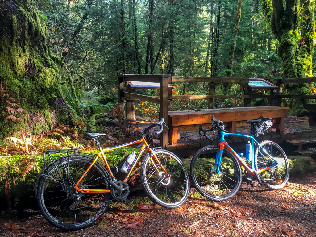 Biking in the Lower Seymour Conservation Reserve in North Vancouver, BC. One of the cycling activities highlighted in the book Active Vancouver by Roy Jantzen.
