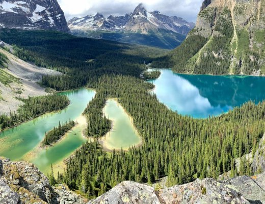 The view of Lake O'Hara and Mary Lake from Opabin Prospect in Yoho National Park