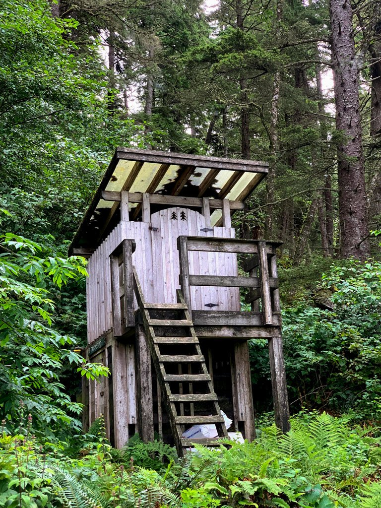 A composting toilet on the West Coast Trail with a ladder to reach the outhouse.
