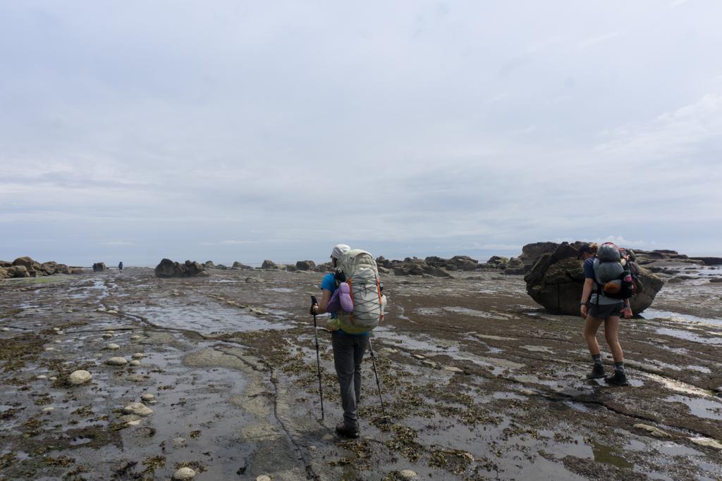 Hikers walk on the sandstone shelf on the West Coast Trail