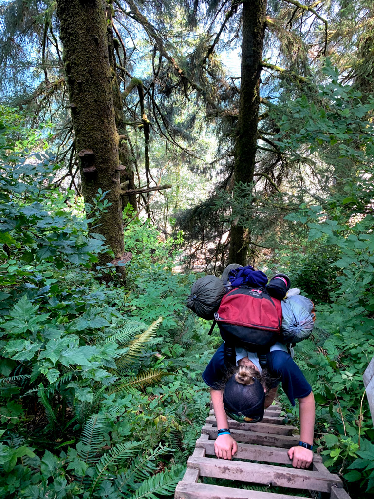 Descending the ladders to Thrasher Cove on the West Coast Trail
