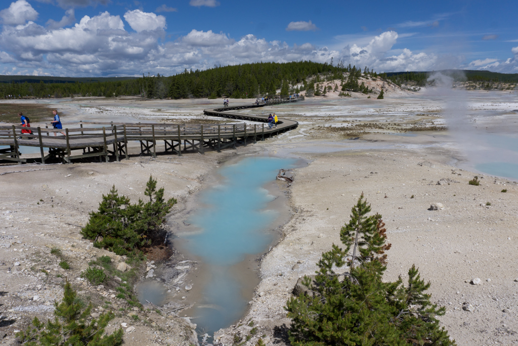 Norris Basin hydrothermal area in Yellowstone National Park